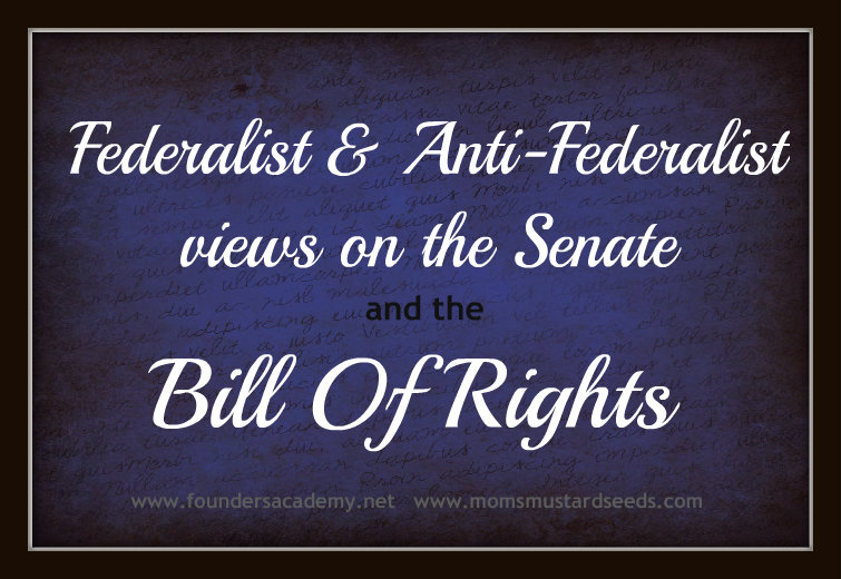 Bill of Rights and Federalist Anti-Federalist views on the Senate