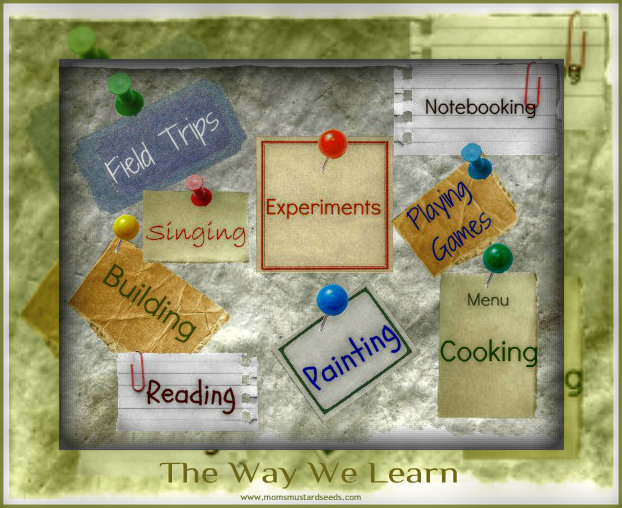 The Way We Learn