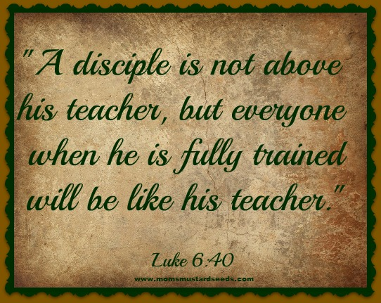 A Disciple Is Not Above His Teacher