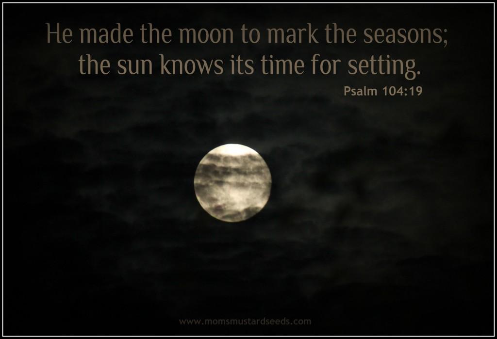 Blue Moon August 31 2012
