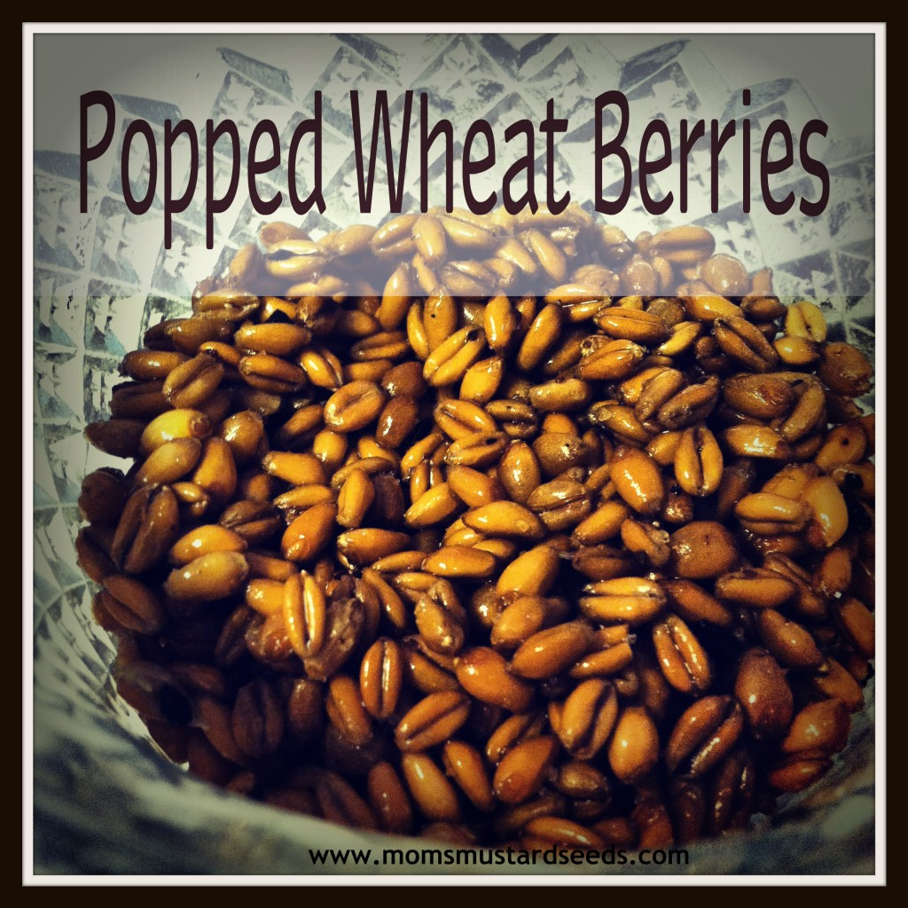 Popped Wheat Berries