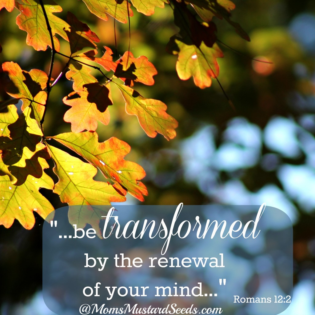 be transformed by the renewal of your mind