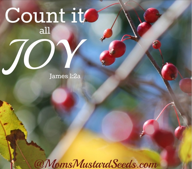 Find Real Joy by Counting it all joy. This life is short, pain will come and go - we can truly find the peace and beauty of joy if we seek it more than we do pain.