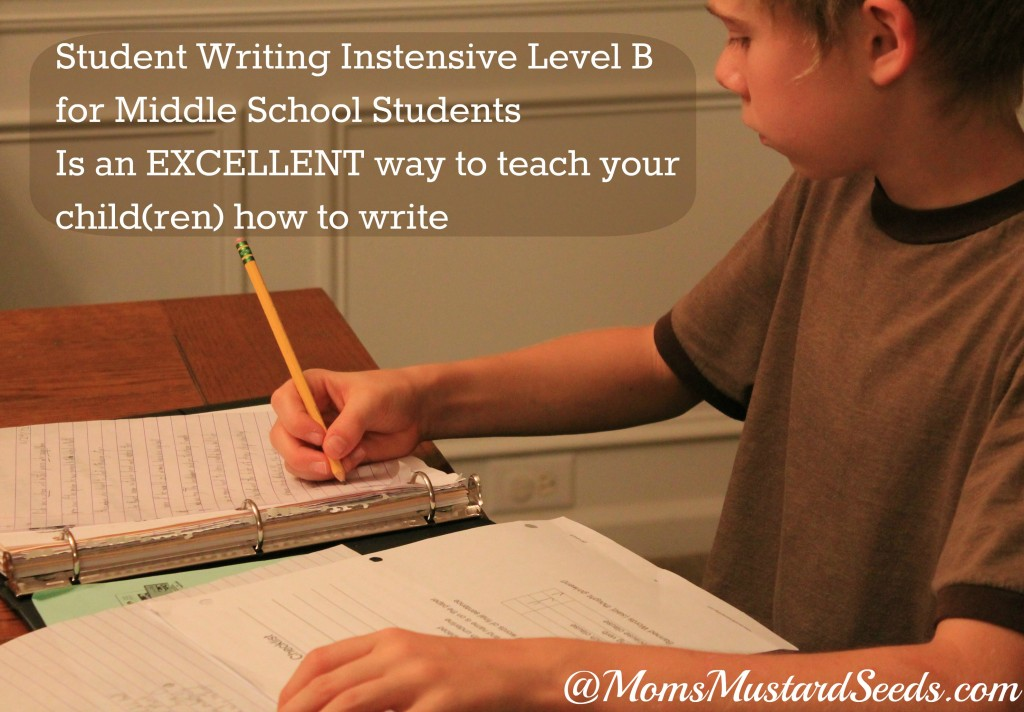 Student Writing Intensive level B