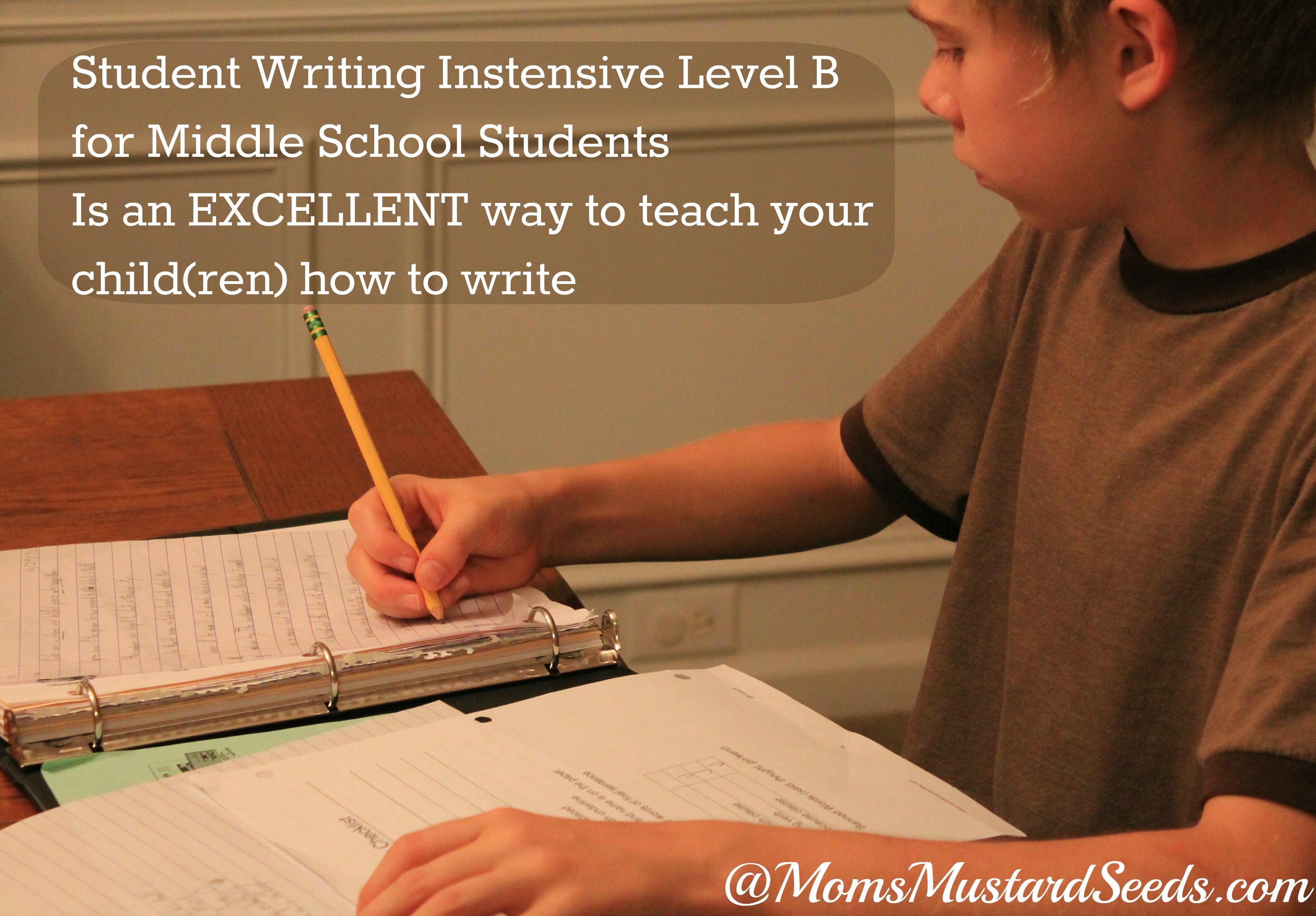 Student Writing Intensive from Institute for Excellence in Writing B
