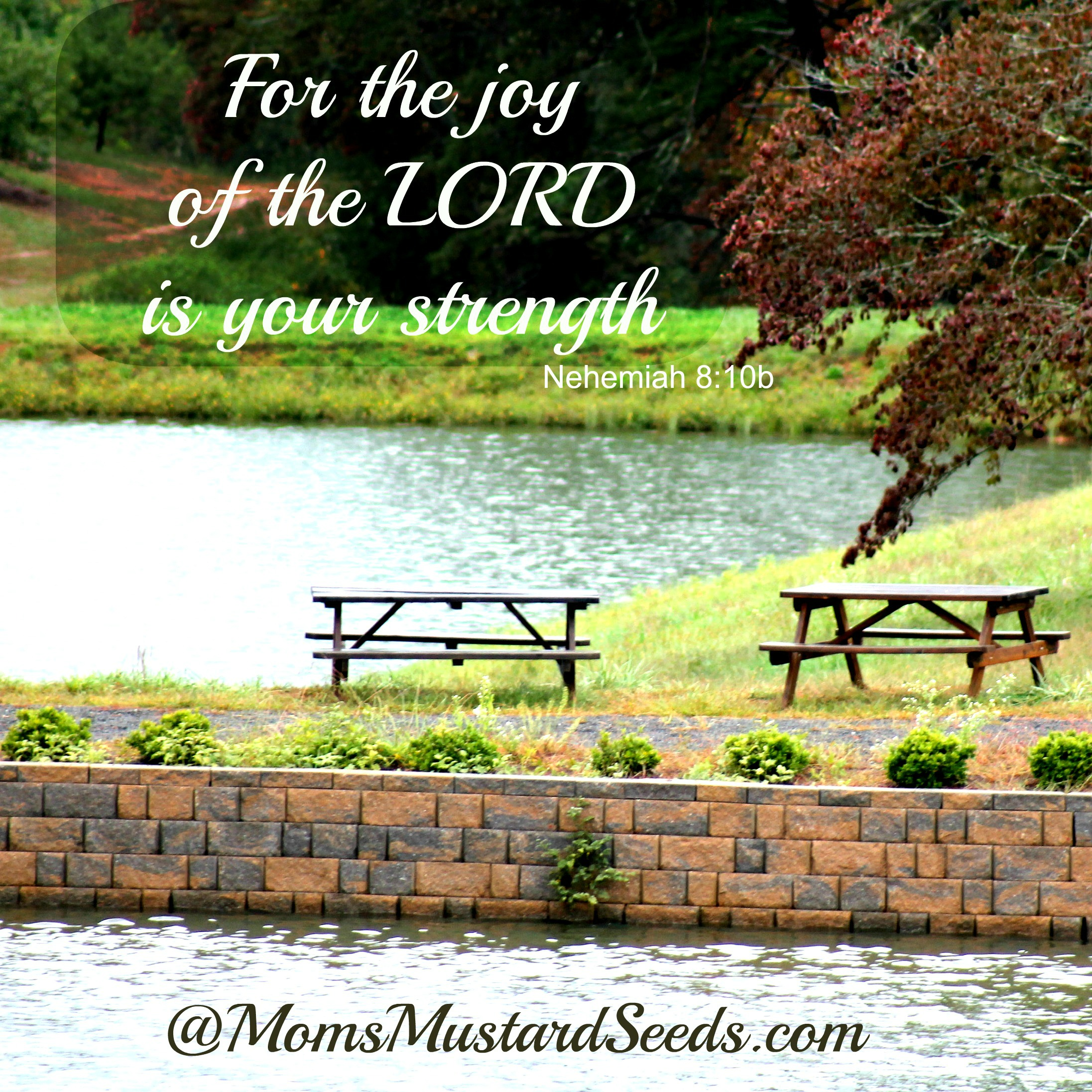 Finding Joy and Strength