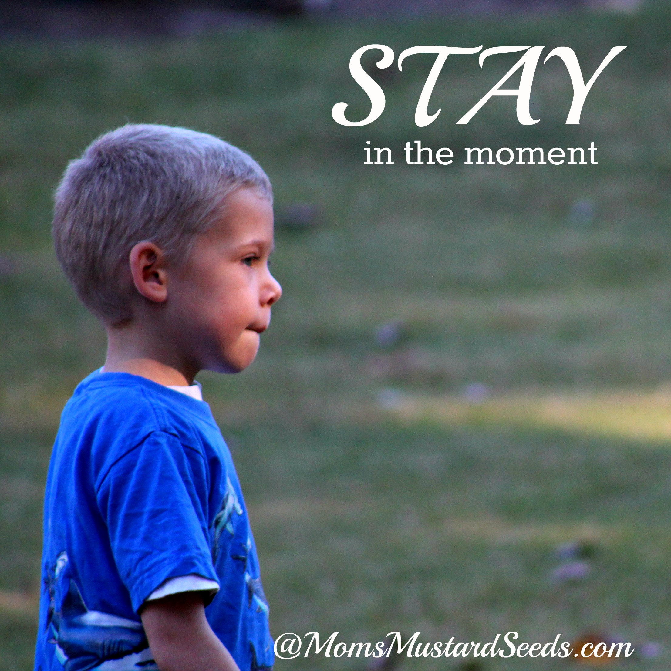 STAY Here in the Moment