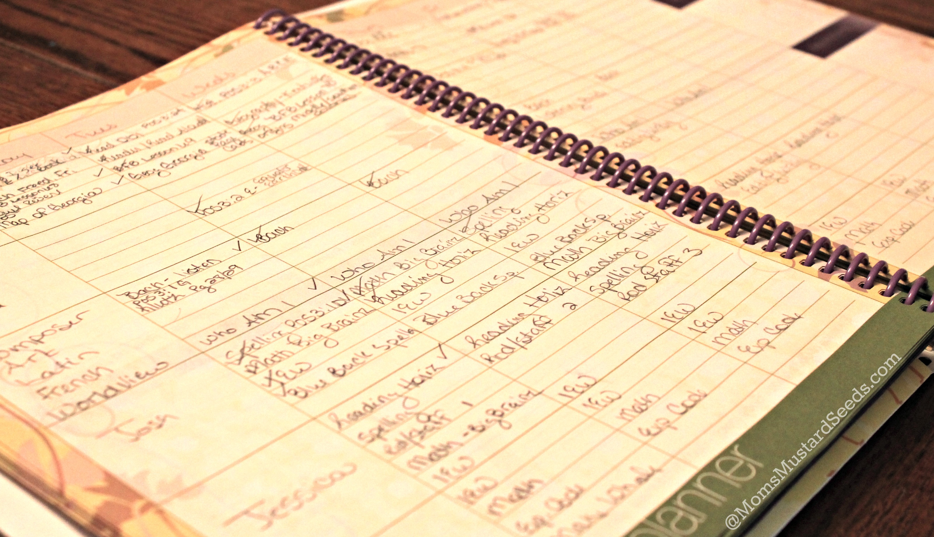 Planning For the Future with the Ultimate Homeschool Planner