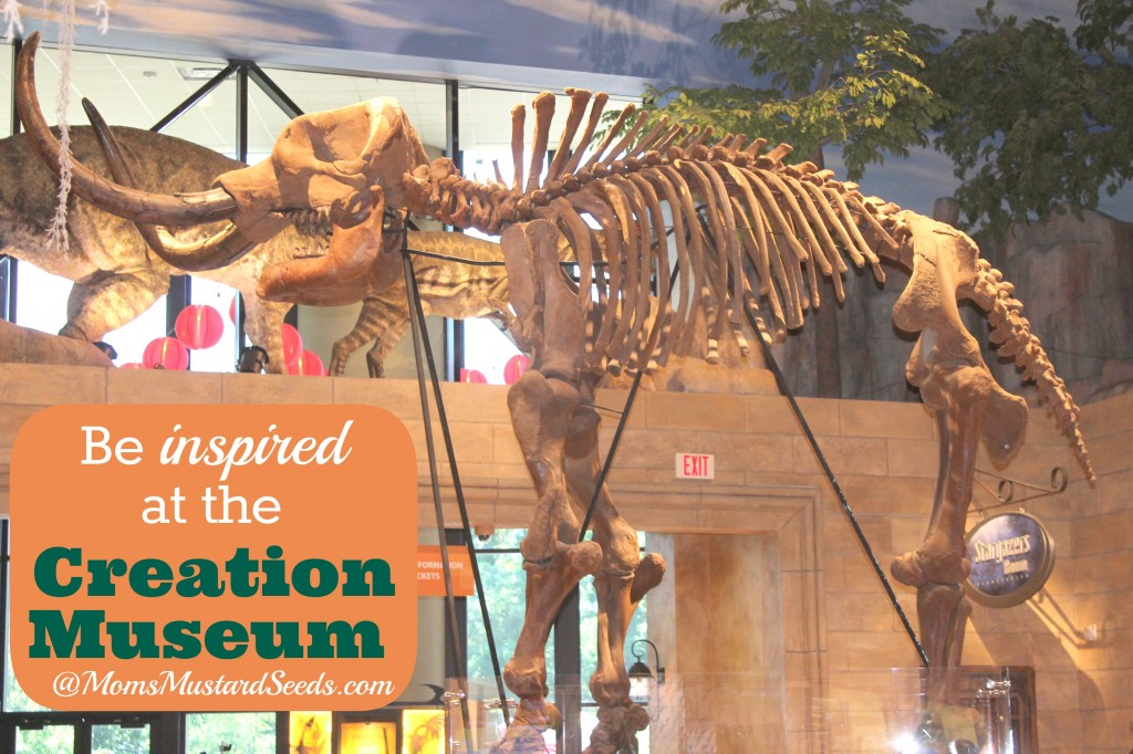 The Creationist Museum