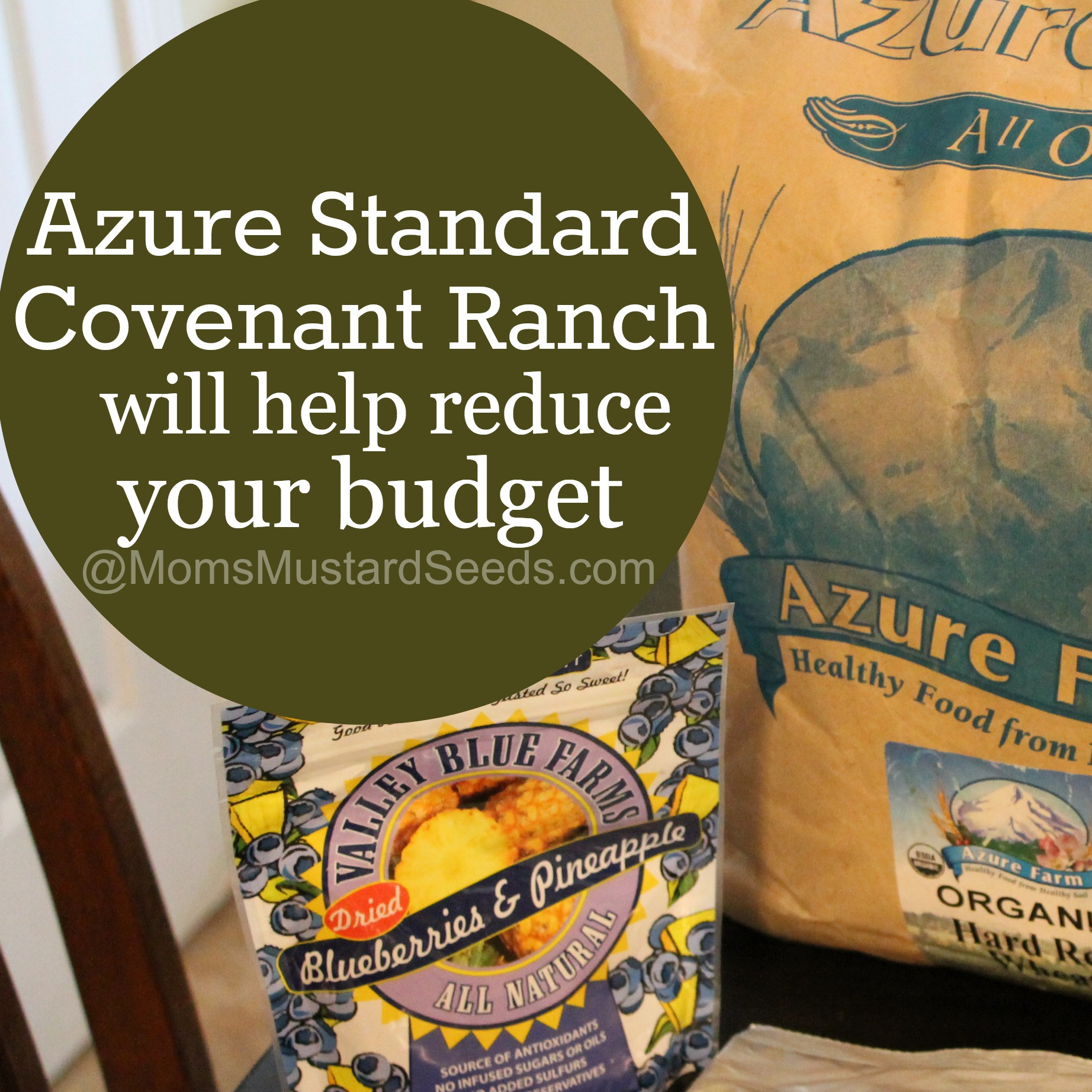 Azure Standard is an Ultimate Mom Resource (Review and Giveaway)