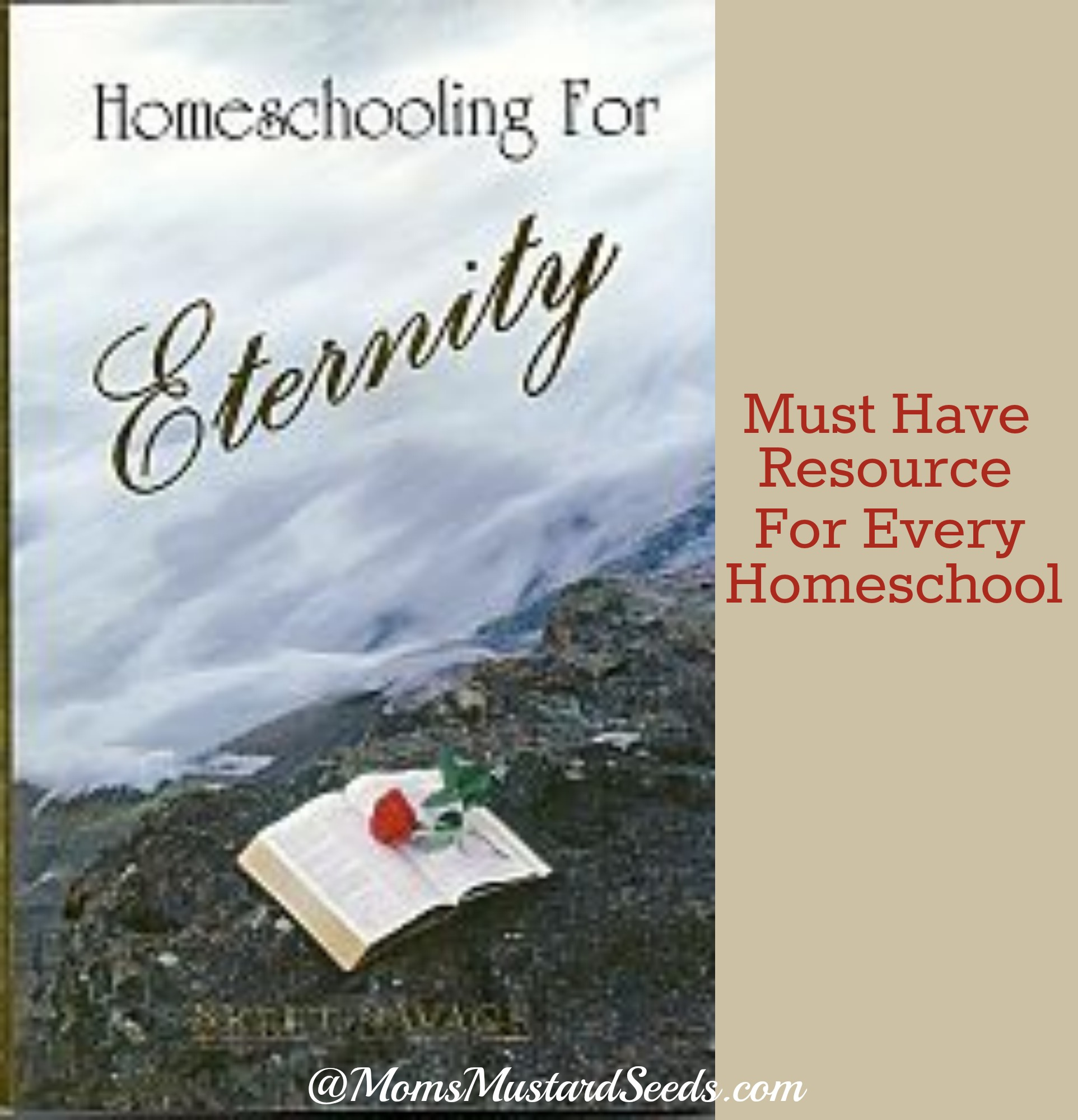 Ultimate Mom Resource:  Homeschooling For Eternity (Review and Link UP)