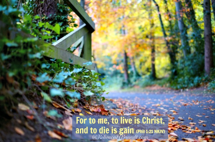 Living In Christ is Never Pragmatic nor a Promise of Prosperity