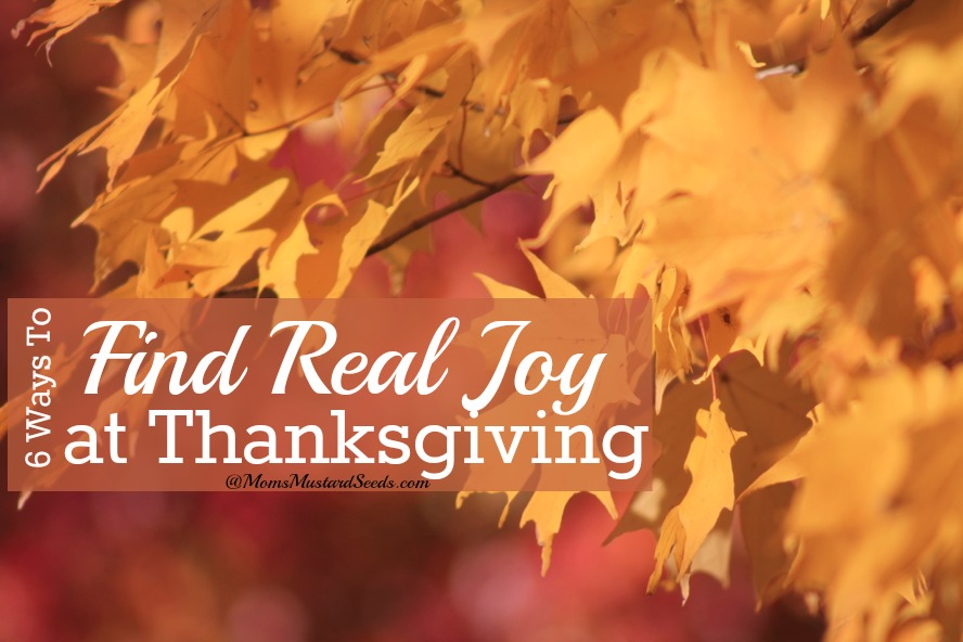 Find Real Joy at Thanksgiving - it's the simple things, the little things, the joy, laughter, books we read, songs we sing and prayers we share. It's living life and knowing each moment is a gift for others, not for ourselves