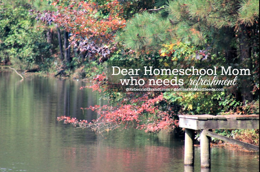 Dear Homeschool Mom who is TIRED