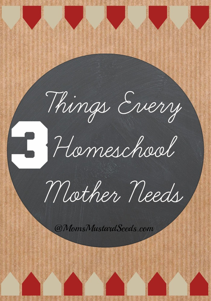 3 Things Ever Homeschool Mother Needs