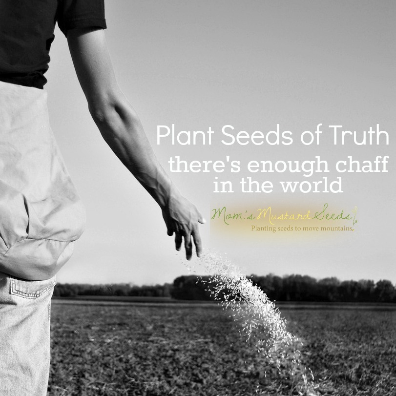 Plant Seeds of Truth